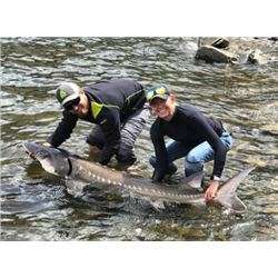 1-day Idaho Fishing Trip for Six Anglers
