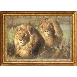 "Rare Limited Edition ""Bushlords"" by Highly Acclaimed Wildlife Artist Shirley Greene"