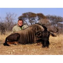 Kudu and Blue Wildebeest and Kruger Park Tour