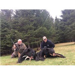 7-Day Black Bear Hunt Canada