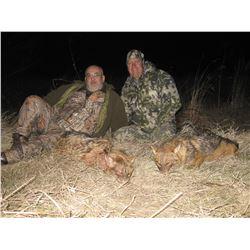 Macedonia Wolf Hunt