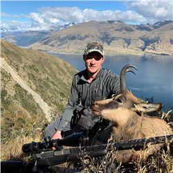 New Zealand Chamois Hunt for One (1) Hunter