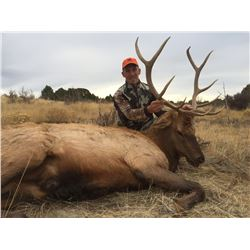 Safari-Tri-Fecta Hunt-Antelope,Deer & Elk in Colorado
