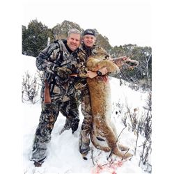 5 Day Mountain Lion Hunt Colorado #2