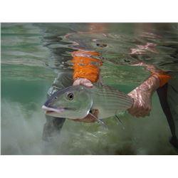 3 Day Bonefishing in the Bahamas