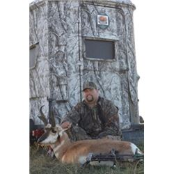 3-Day/4-Night Nebraska Archery Antelope Hunt for 1 Hunter
