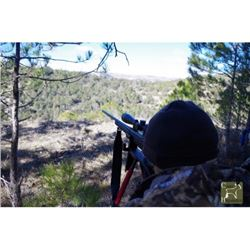 5-Day Spanish Hunt for 1 Hunter with Trophy Credit