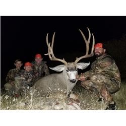 2020 Utah Fillmore, Oak Creek LE Buck Deer Landowner Permit