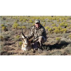 3-Day Pronghorn Hunt for One (1) Hunter