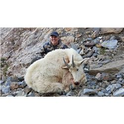 2020 Utah Ogden, Willard Peak Mountain Goat Conservation Permit (Early) Any Legal Weapon (Rifle)