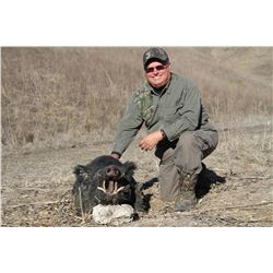 2-Day California Wild Boar Hunt for Two (2) Hunters