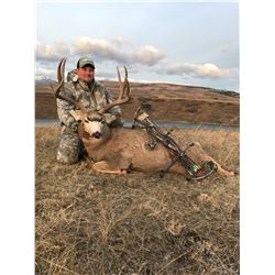 7-Day Alberta Archery Mule Deer Hunt for One (1) Hunter