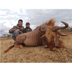 6-Day South Africa Blue Wildebeest, Impala, Blesbok and Springbok Hunt for Four (4) Hunters