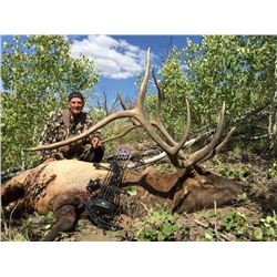 2020 Utah Mt. Dutton, Bull Elk Conservation Permit, Multi Season