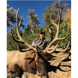 2020 Utah Fillmore, Pahvant Bull Elk Landowner Permit, Hunter's Choice
