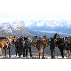 10-day Horseback Moose/Grizzly Combo Hunt in Alaska