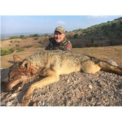5-Day Macedonia European Grey Wolf Hunt for One (1) Hunter and One (1) Non-Hunter