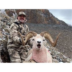 10 - Day Arctic Red River Outfitters Dall Sheep HORSEBACK Hunt for One (1) Hunter