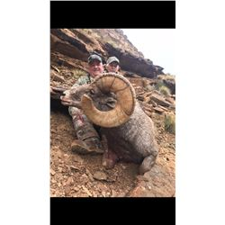 2020 Utah Nine Mile, Gray Canyon Rocky Mountain Bighorn Sheep Conservation Permit, Any Legal weapon