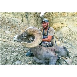 2020 Utah Kaiparowits, East/Escalante/West (Any Weapon) Desert Bighorn Sheep Conservation Permit