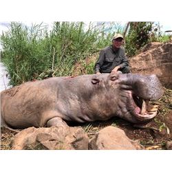 7-Day Hippo Hunt in Mozambique South Africa for One (1) Hunter