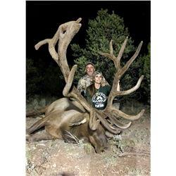 2020 Arizona Special License - Elk Tag