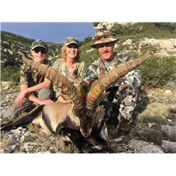 Spain | Five Days for one hunter (and one Non-hunter or $2,000 trophy Fee Credit)