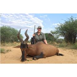 NAMIBIA TEN DAYS ONE HUNTER AND ONE NON-HUNTER Eland, Oryx, Hartebeest and Warthog!