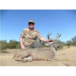 COUES DEER HUNT IN SONORA MEXICO - For Two Hunters with Erwins Outdoors