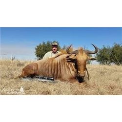 MARUPA SAFARIS - SOUTH AFRICA | Ten Days for One Hunter and Four Great Trophies