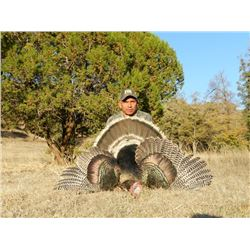 GOULDS TURKEY HUNT IN SONORA MEXICO | For Two Hunters with Erwins Outdoors