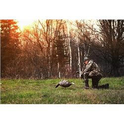 TURKEY HUNT IN NORTHERN MICHIGAN | GUIDED BY JADA JOHNSON HOST OF BIGBOYS TV