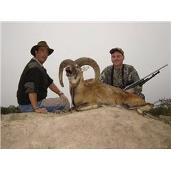 7 Day Big Game Hunt for 2 Hunters in Argentina.