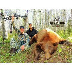 Black Bear Hunt with Big Tine Adventures