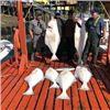 Image 4 : Waters Edge Lodge Elfin Cove Alaska Self-guided Fishing Adventure