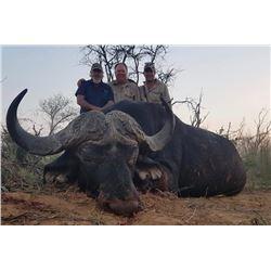 DE DUINE SAFARIS , SOUTH AFRICA  Hunt with 2 GEMSBUCK , 2 BLUE WB , 2 BLESBUCK , 2 STEINBUCK