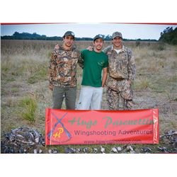 Four Day High Volume Dove Hunting in Argentina for Four Hunters