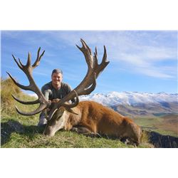Five Day New Zealand Red Stag Hunt for One Hunter and One Observer