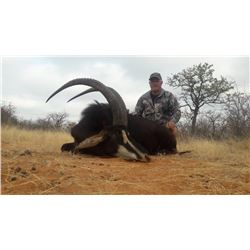 Sable hunt with Ubathi Global Safaris