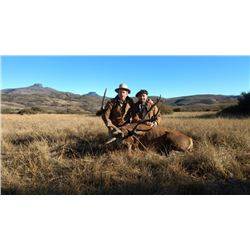 Argentina Red Stag for 2 hunters with Patagonia Hunters
