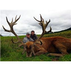Scotland Red Stag for 1 hunter with International Adventures Unlimited
