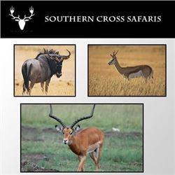 Southern Cross Safari for up to 4 hunters