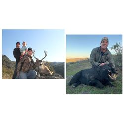 3 Day Management Columbia Black Tail Buck & Wild Boar for One Hunter