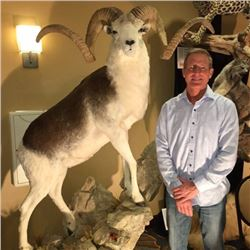 $500 Taxidermy Gift Certificate Valid for new work only Donated by Toms Taxidermy