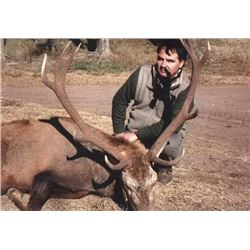 5 Day Argentina Red Stag Hunt