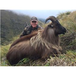 New Zealand: 4 Day 3 Night Himalayan tahr for 1 hunter and 1 observer,  trophy fee included