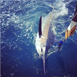 Belize Island 5 Nights 6 Days Fishing and Diving in Belizean Sea for Two