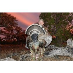 Mexico: 4 Day 5 Night Gould Turkey Hunt for 2 Hunters with Safari Unlimited