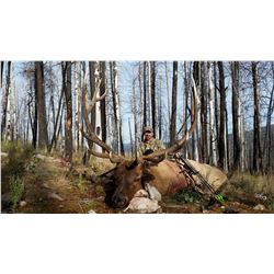 New Mexico: 5 Day Elk/Deer/Bear Combination Archery hunt for 2 hunters