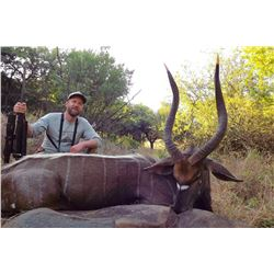 South Africa: 10 Day Plains Game Safari for 4 Hunters, includes 2 trophies per hunter.